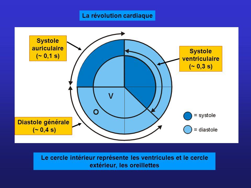 Systole auriculaire (~ 0,1 s) Diastole générale (~ 0,4 s) La révolution cardiaque Le cercle intérieur représente les ventricules et le cercle extérieu