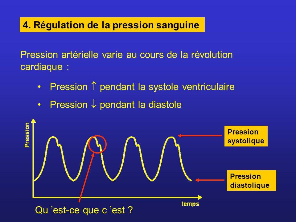 4. Régulation de la pression sanguine Pression artérielle varie au cours de la révolution cardiaque : Pression pendant la systole ventriculaire Pressi