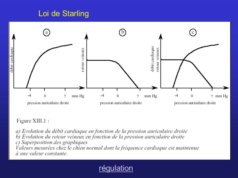 Loi de Starling régulation