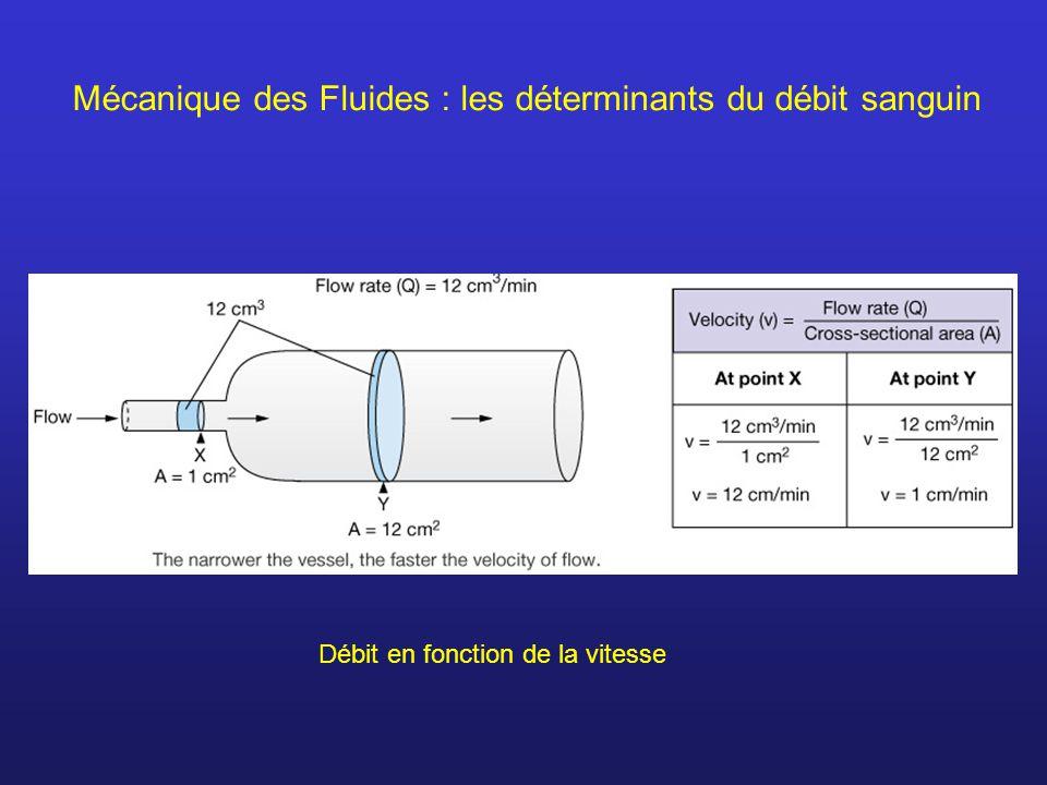 Mécanique des Fluides : les déterminants du débit sanguin Débit en fonction de la vitesse