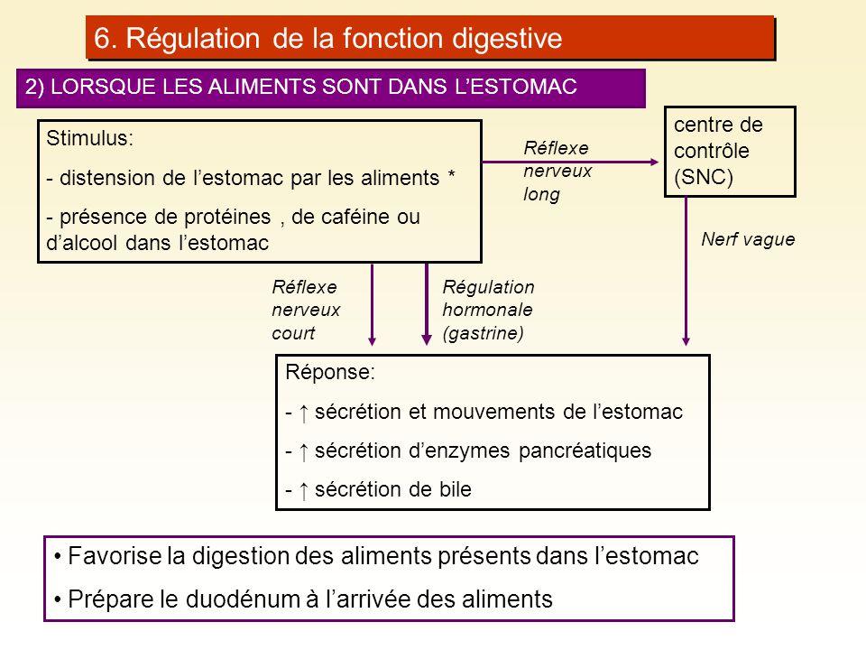 6. Régulation de la fonction digestive 2) LORSQUE LES ALIMENTS SONT DANS LESTOMAC Stimulus: - distension de lestomac par les aliments * - présence de