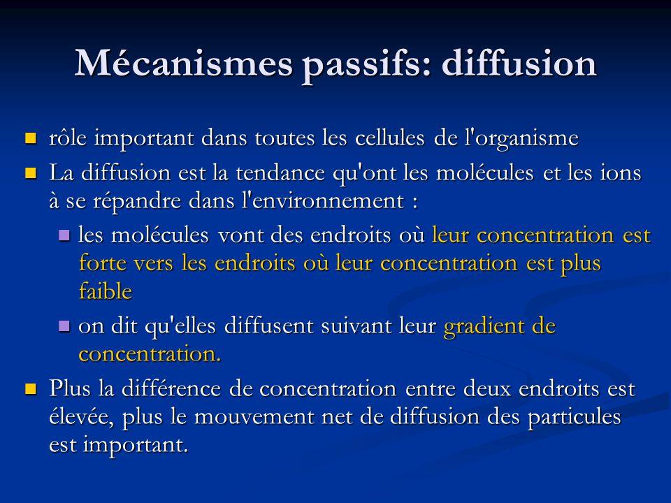 Mécanismes passifs: diffusion rôle important dans toutes les cellules de l'organisme rôle important dans toutes les cellules de l'organisme La diffusi