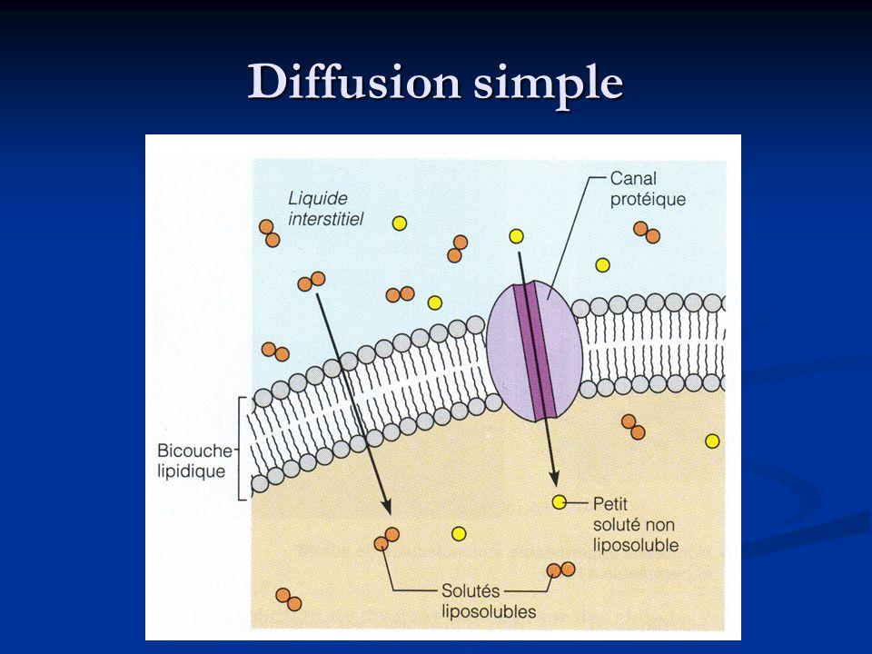 Diffusion simple