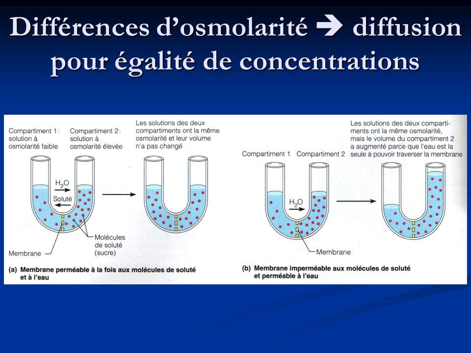 Différences dosmolarité diffusion pour égalité de concentrations