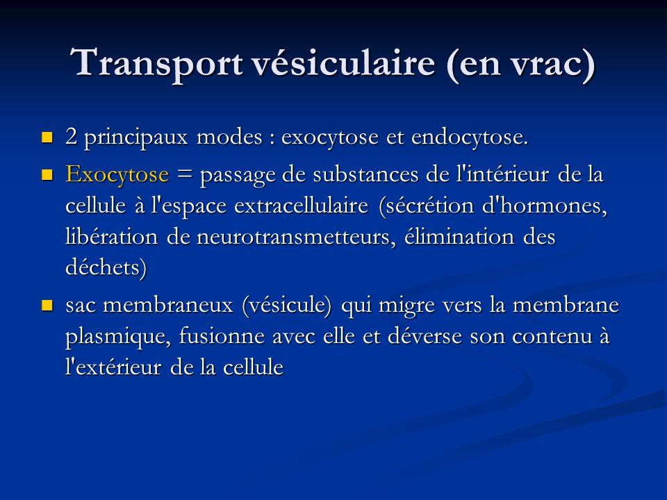 Transport vésiculaire (en vrac) 2 principaux modes : exocytose et endocytose. 2 principaux modes : exocytose et endocytose. Exocytose = passage de sub
