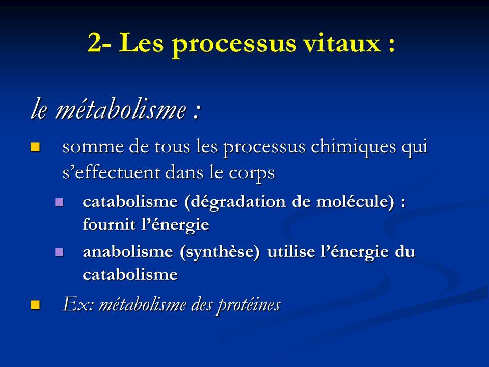 2- Les processus vitaux : le métabolisme : somme de tous les processus chimiques qui seffectuent dans le corps somme de tous les processus chimiques q
