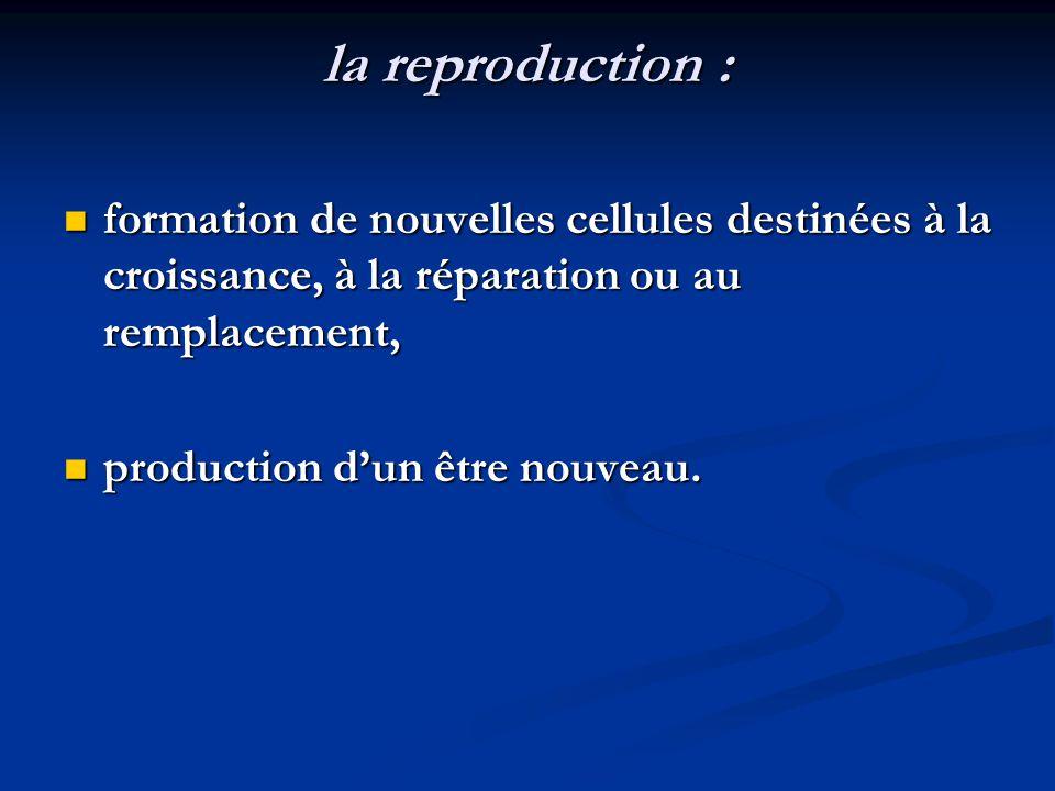 la reproduction : formation de nouvelles cellules destinées à la croissance, à la réparation ou au remplacement, formation de nouvelles cellules desti