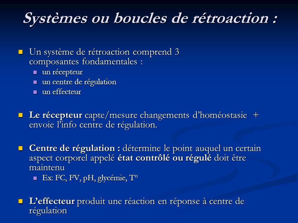 Systèmes ou boucles de rétroaction : Un système de rétroaction comprend 3 composantes fondamentales : Un système de rétroaction comprend 3 composantes