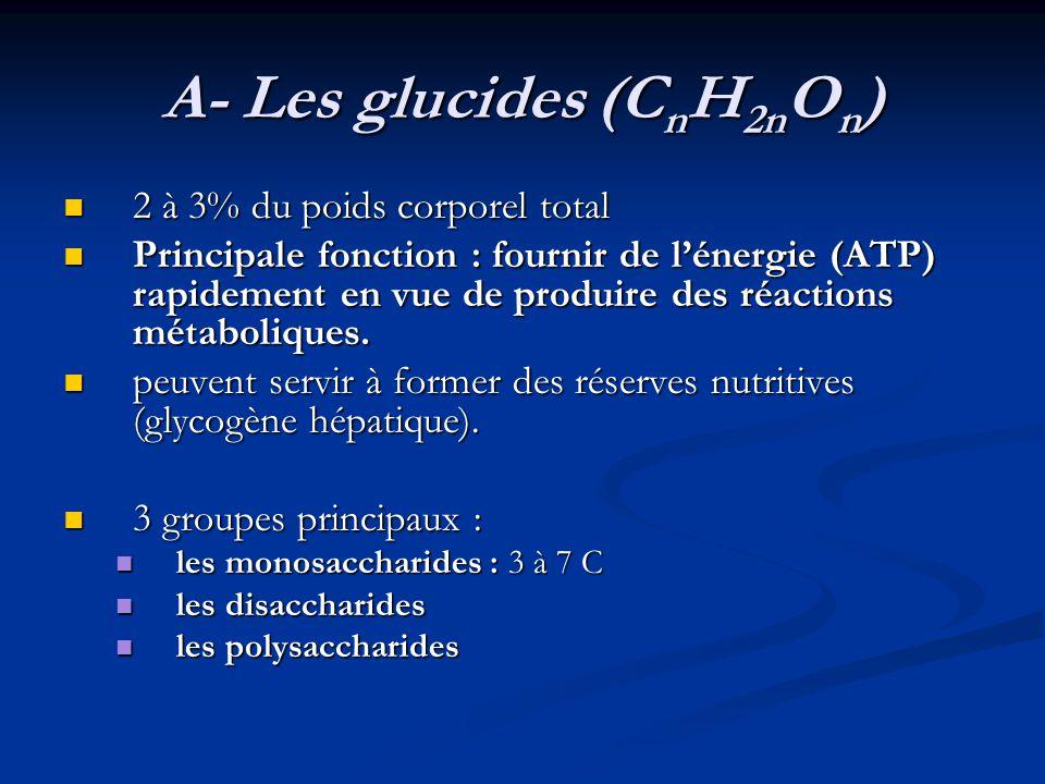 A- Les glucides (C n H 2n O n ) 2 à 3% du poids corporel total 2 à 3% du poids corporel total Principale fonction : fournir de lénergie (ATP) rapideme