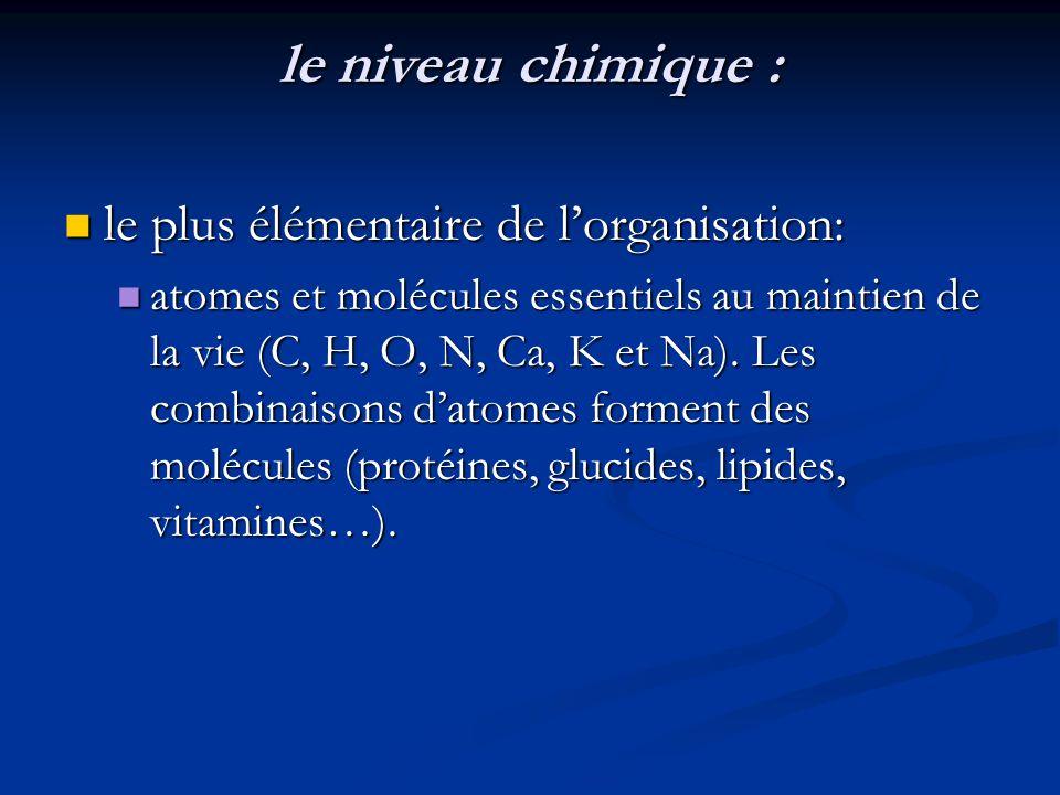 le niveau chimique : le plus élémentaire de lorganisation: le plus élémentaire de lorganisation: atomes et molécules essentiels au maintien de la vie