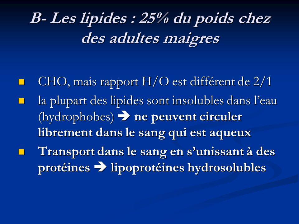 B- Les lipides : 25% du poids chez des adultes maigres CHO, mais rapport H/O est différent de 2/1 CHO, mais rapport H/O est différent de 2/1 la plupar