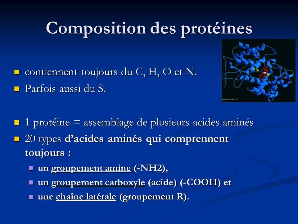 Composition des protéines contiennent toujours du C, H, O et N. contiennent toujours du C, H, O et N. Parfois aussi du S. Parfois aussi du S. 1 protéi