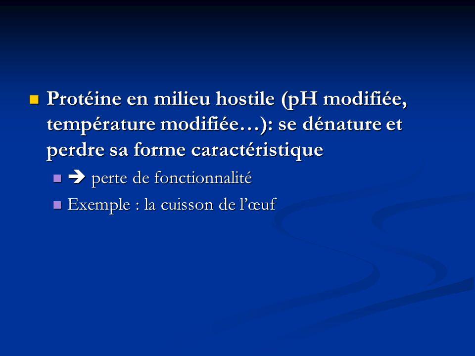 Protéine en milieu hostile (pH modifiée, température modifiée…): se dénature et perdre sa forme caractéristique Protéine en milieu hostile (pH modifié