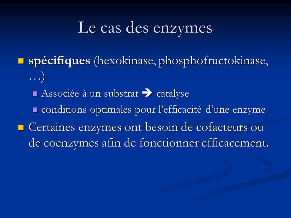 Le cas des enzymes spécifiques (hexokinase, phosphofructokinase, …) spécifiques (hexokinase, phosphofructokinase, …) Associée à un substrat catalyse A