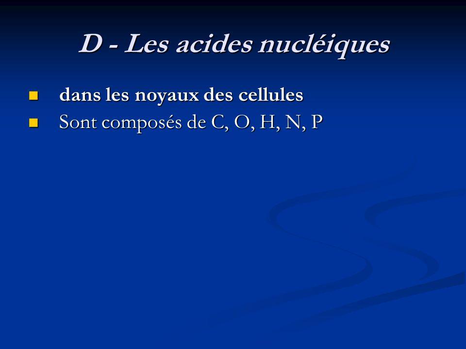 D - Les acides nucléiques dans les noyaux des cellules dans les noyaux des cellules Sont composés de C, O, H, N, P Sont composés de C, O, H, N, P