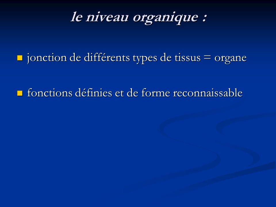 le niveau organique : jonction de différents types de tissus = organe jonction de différents types de tissus = organe fonctions définies et de forme r