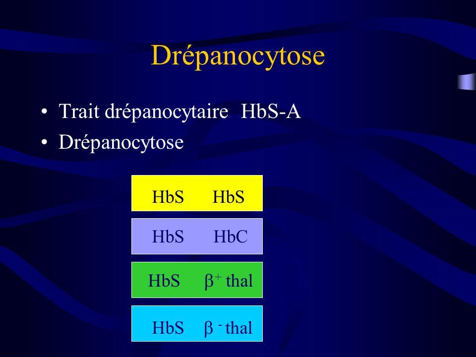 Drépanocytose Trait drépanocytaire HbS-A Drépanocytose HbS HbS HbC HbS + thal HbS - thal