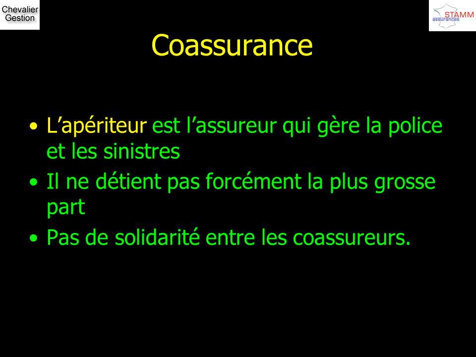 Coassurance Lapériteur est lassureur qui gère la police et les sinistres Il ne détient pas forcément la plus grosse part Pas de solidarité entre les c