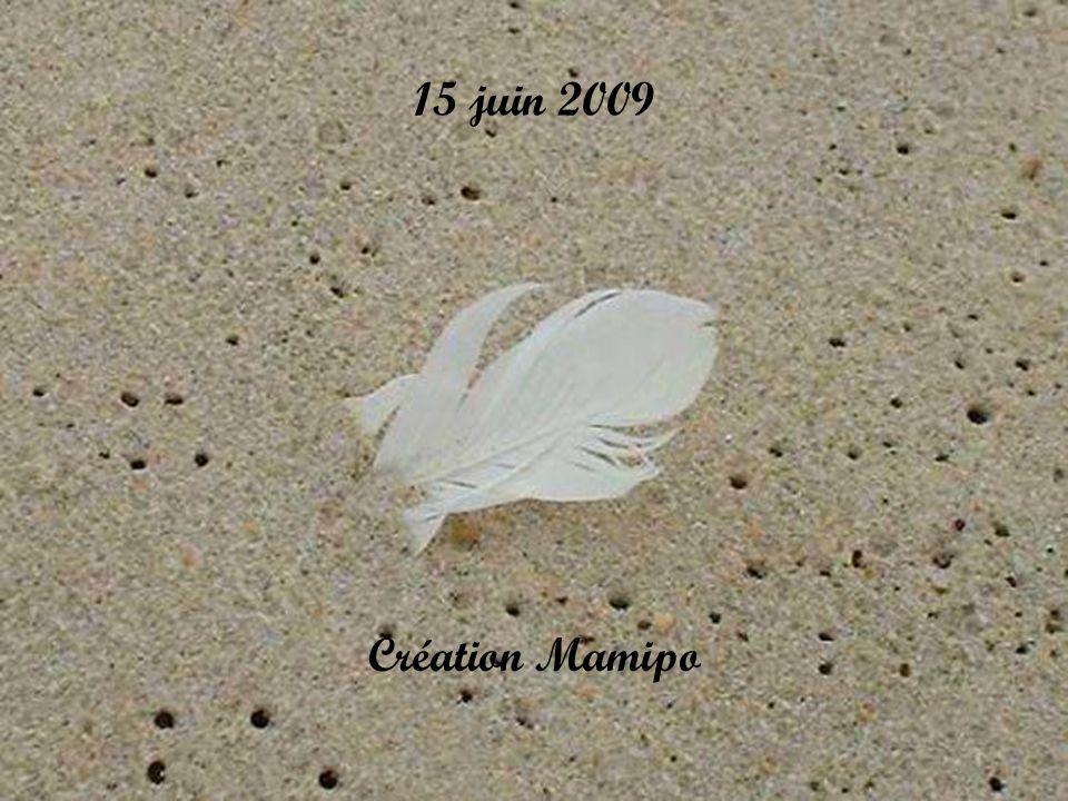 « Je voyage sûrement sur la route des anges Celle du dépassement De la renaissance et du véritable amour » Texte Thérèse Benoit