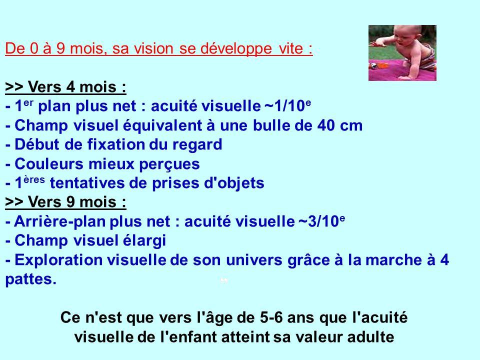 De 0 à 9 mois, sa vision se développe vite : >> Vers 4 mois : - 1 er plan plus net : acuité visuelle ~1/10 e - Champ visuel équivalent à une bulle de 40 cm - Début de fixation du regard - Couleurs mieux perçues - 1 ères tentatives de prises d objets >> Vers 9 mois : - Arrière-plan plus net : acuité visuelle ~3/10 e - Champ visuel élargi - Exploration visuelle de son univers grâce à la marche à 4 pattes.