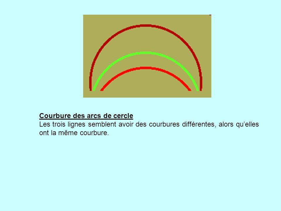 Courbure des arcs de cercle Les trois lignes semblent avoir des courbures différentes, alors quelles ont la même courbure.