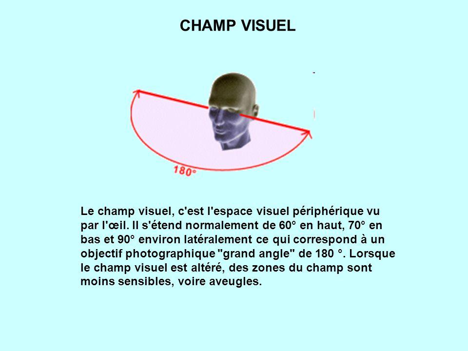 Le champ visuel, c est l espace visuel périphérique vu par l œil.