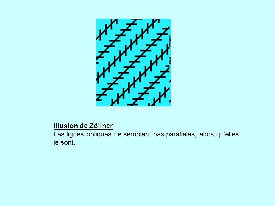 Illusion de Zöllner Les lignes obliques ne semblent pas parallèles, alors quelles le sont.