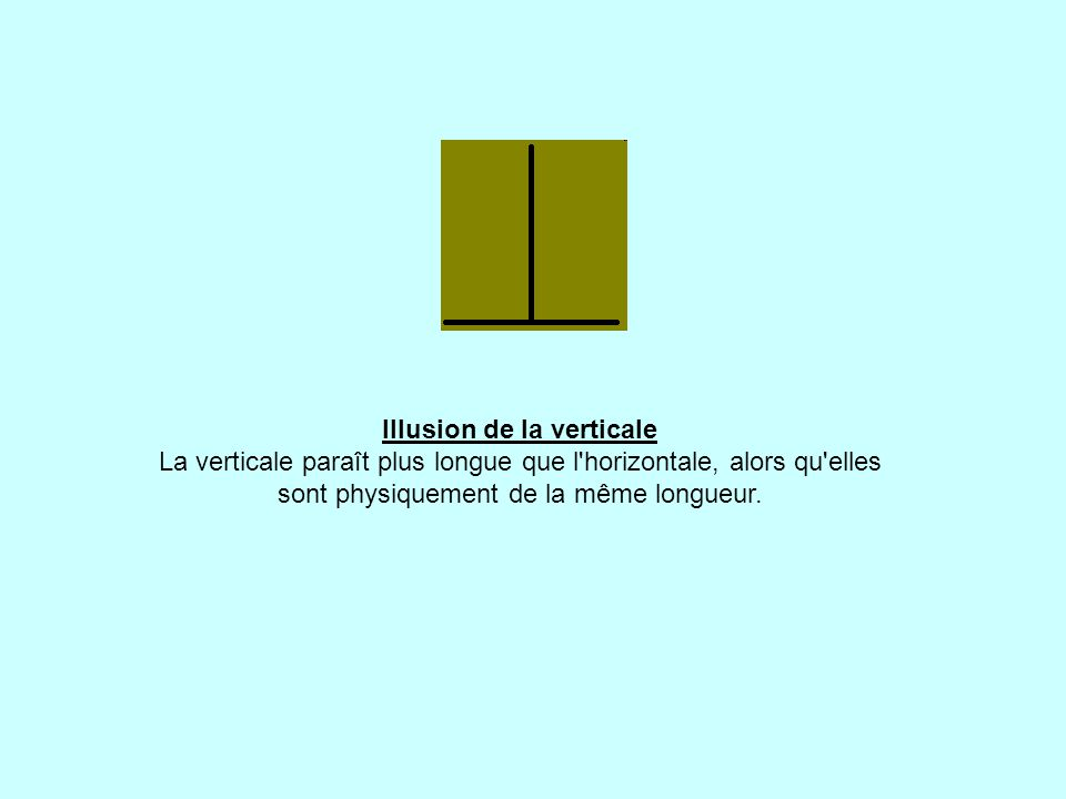 Illusion de la verticale La verticale paraît plus longue que l horizontale, alors qu elles sont physiquement de la même longueur.
