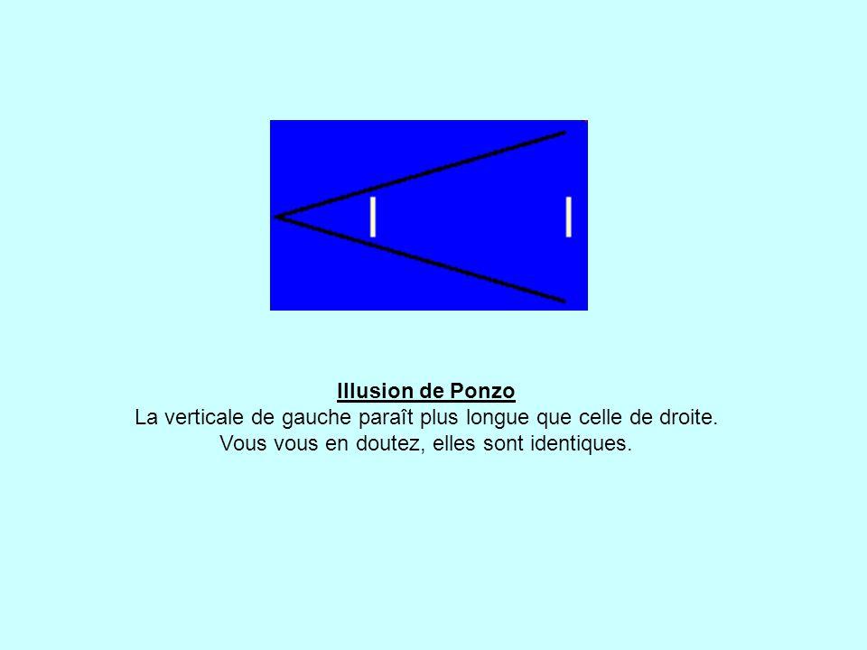 Illusion de Ponzo La verticale de gauche paraît plus longue que celle de droite.