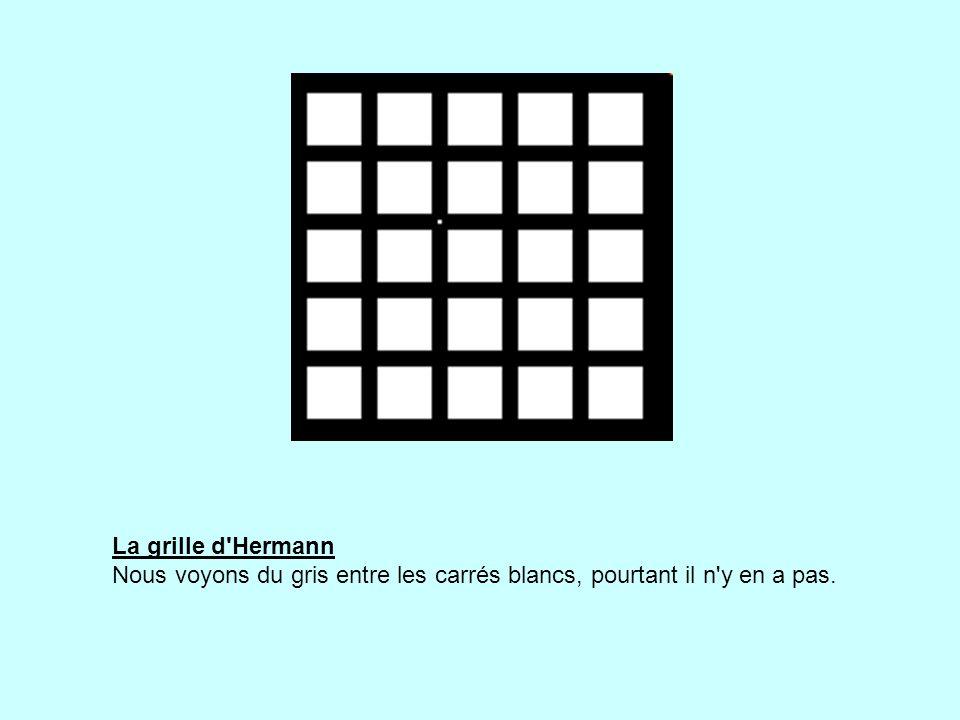 La grille d Hermann Nous voyons du gris entre les carrés blancs, pourtant il n y en a pas.