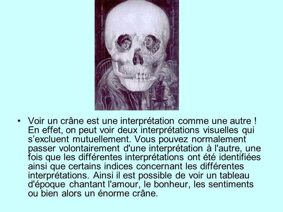 Voir un crâne est une interprétation comme une autre .
