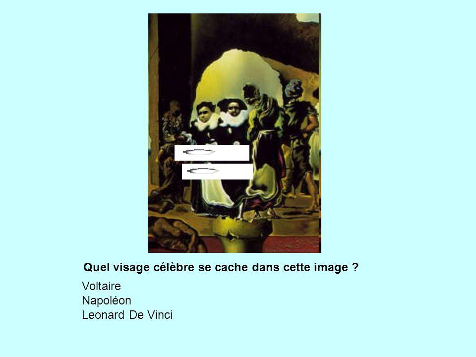 Quel visage célèbre se cache dans cette image ? Voltaire Napoléon Leonard De Vinci