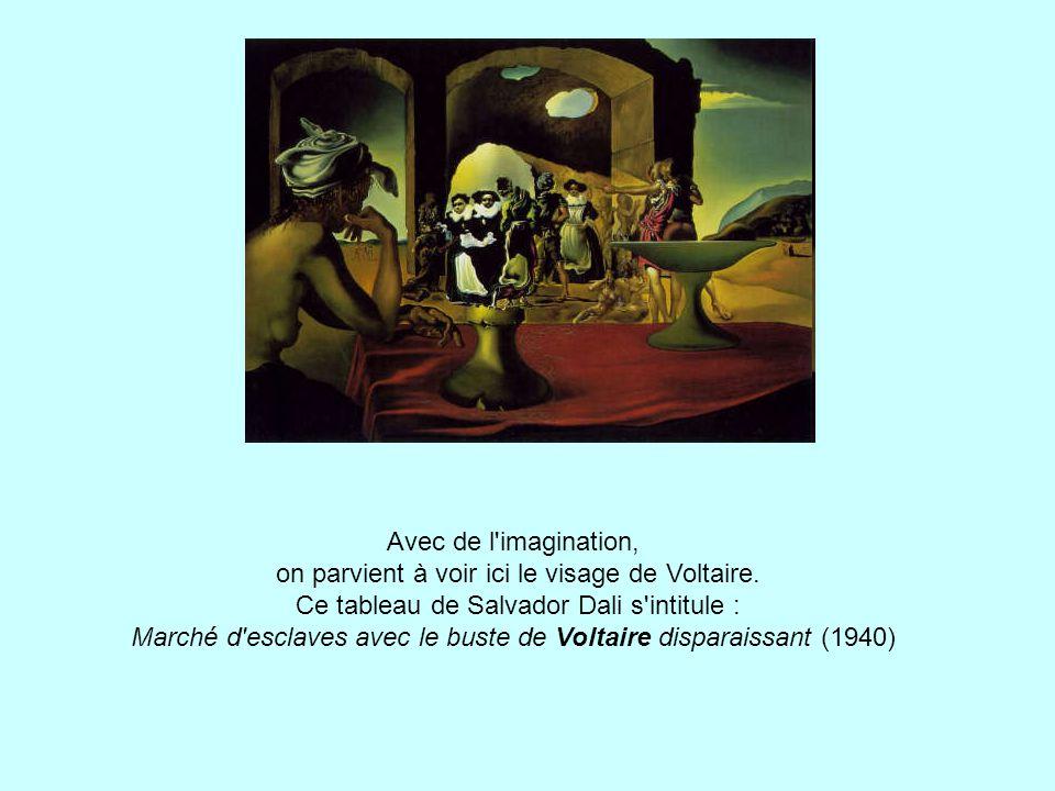 Avec de l imagination, on parvient à voir ici le visage de Voltaire.