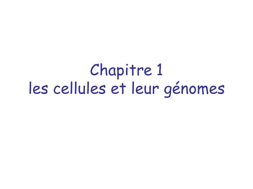 Chapitre 1 les cellules et leur génomes