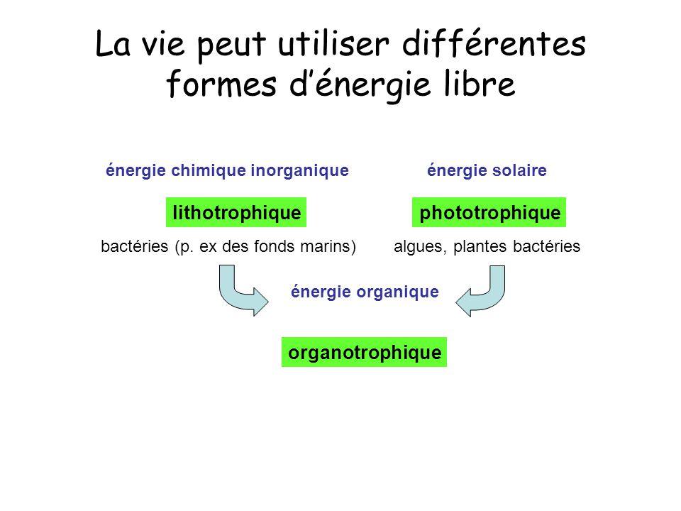 La vie peut utiliser différentes formes dénergie libre organotrophique lithotrophiquephototrophique énergie chimique inorganiqueénergie solaire énergi
