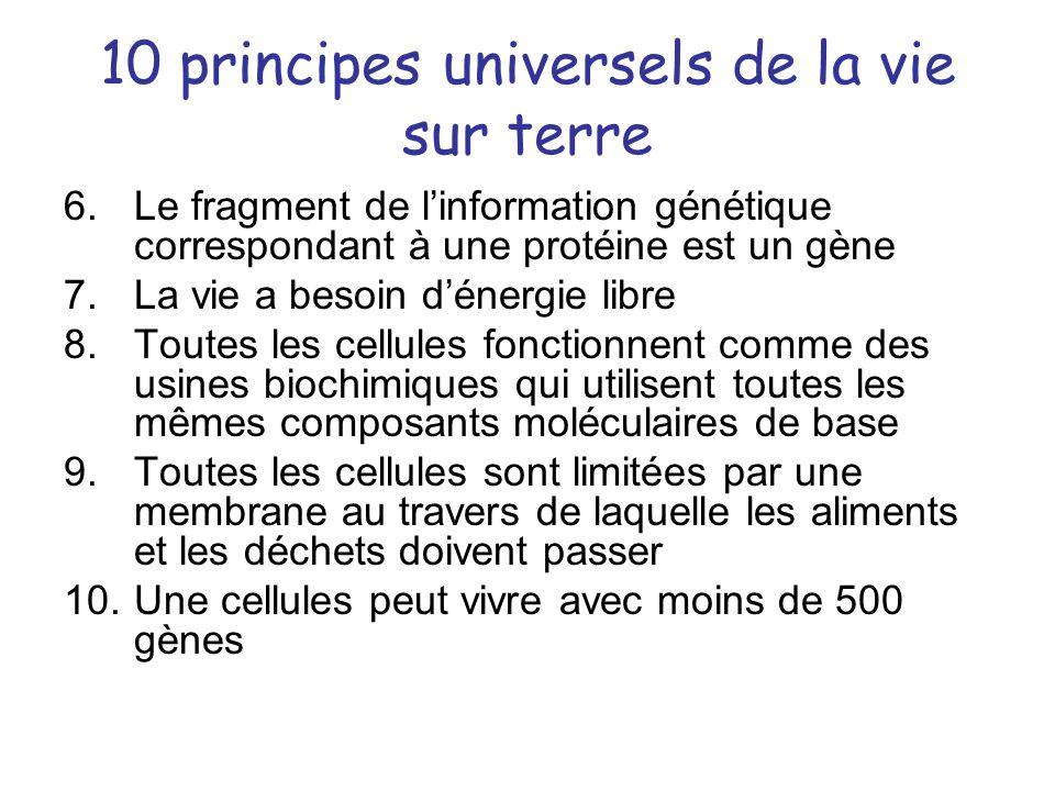 10 principes universels de la vie sur terre 6.Le fragment de linformation génétique correspondant à une protéine est un gène 7.La vie a besoin dénergi