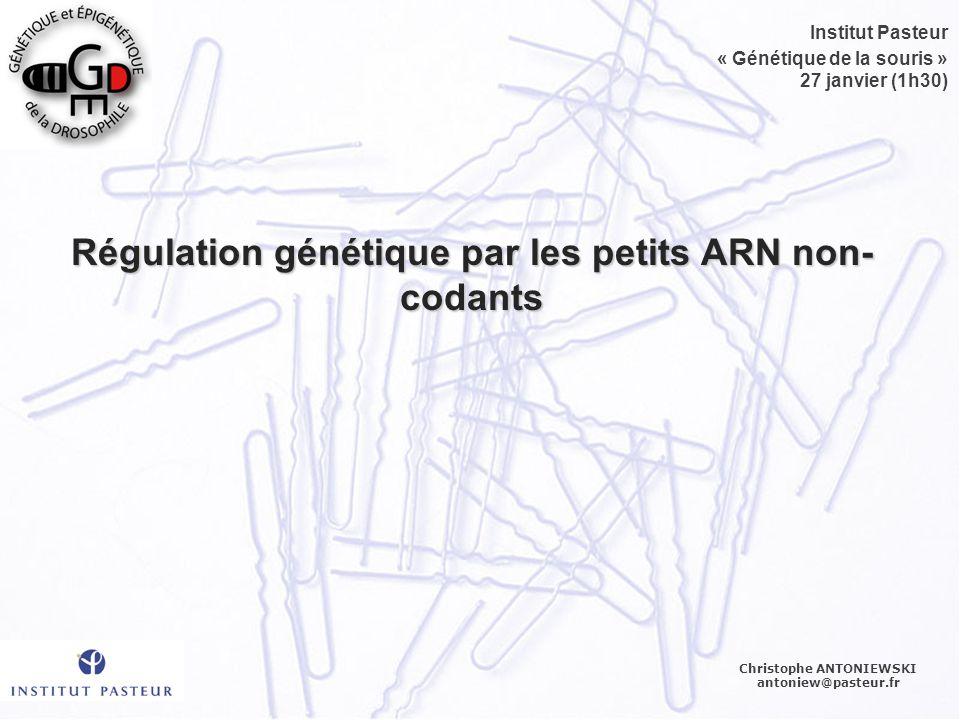 Régulation génétique par les petits ARN non- codants Christophe ANTONIEWSKI antoniew@pasteur.fr Institut Pasteur « Génétique de la souris » 27 janvier (1h30)