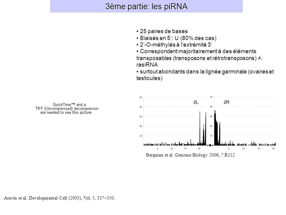 3ème partie: les piRNA Bergman et al.Genome Biology 2006, 7:R112 Aravin et al.