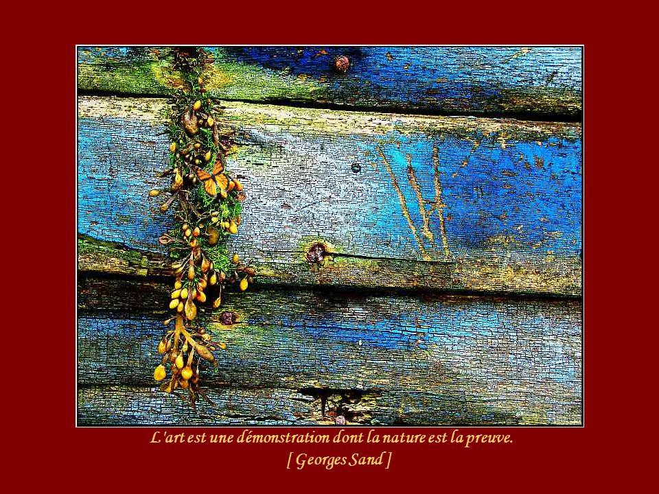 L art est une démonstration dont la nature est la preuve. [ Georges Sand ]