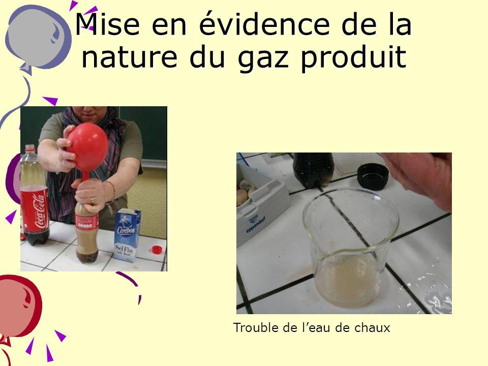 5 Mise en évidence de la nature du gaz produit Trouble de leau de chaux