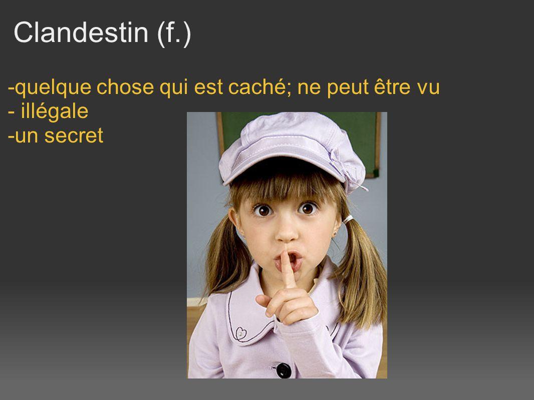 Clandestin (f.) -quelque chose qui est caché; ne peut être vu - illégale -un secret