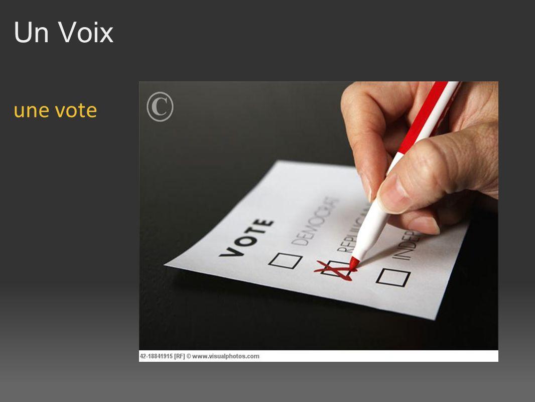 Un Voix une vote