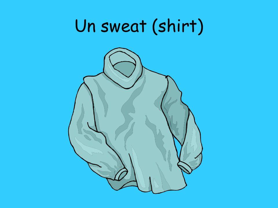 Un sweat (shirt)