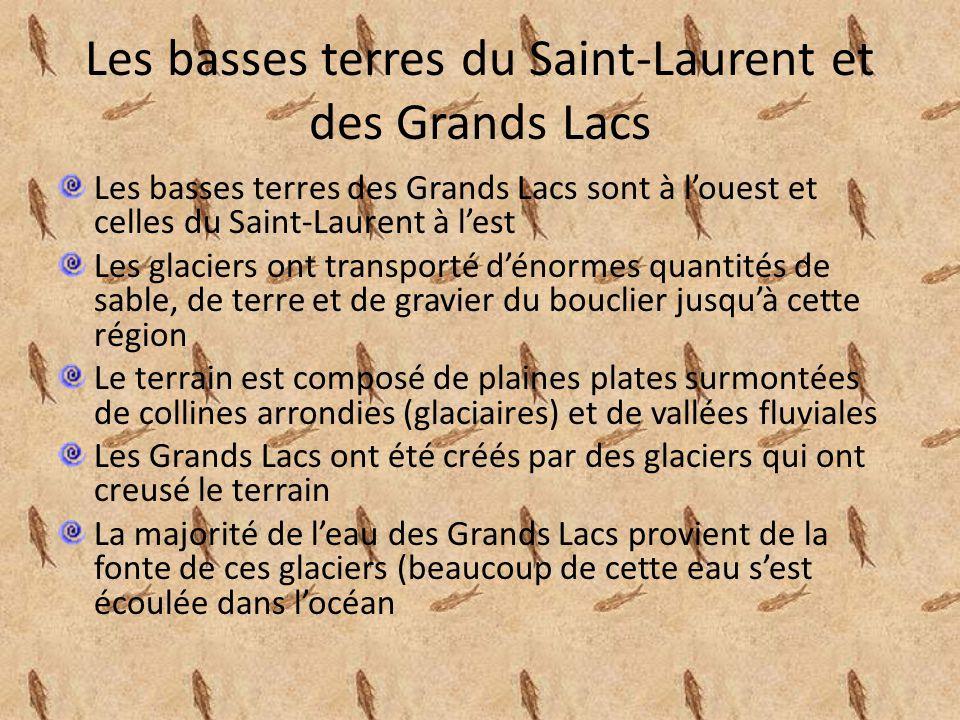 Les basses terres du Saint-Laurent Elles sont situées le long des deux rives du Saint- Laurent à lest de lile de Montréal et à louest jusquaux Grands Lacs Les basses terres des Grands Lacs furent formées par des dépôts de glaciers Le fleuve Saint-Laurent est le résultat dune faille (faille de Logan) et des dépôts sédimentaires se sont déposés sur ses rives dans la région de Montréal, de leau de lOcéan Atlantique créait une mer intérieure appelée la « Mer de Champlain » qui sest vidée et a laissé une vaste étendue de terrain plat dans la région de Montréal, de leau de lOcéan Atlantique créait une mer intérieure appelée la « Mer de Champlain » qui sest vidée et a laissé une vaste étendue de terrain plat