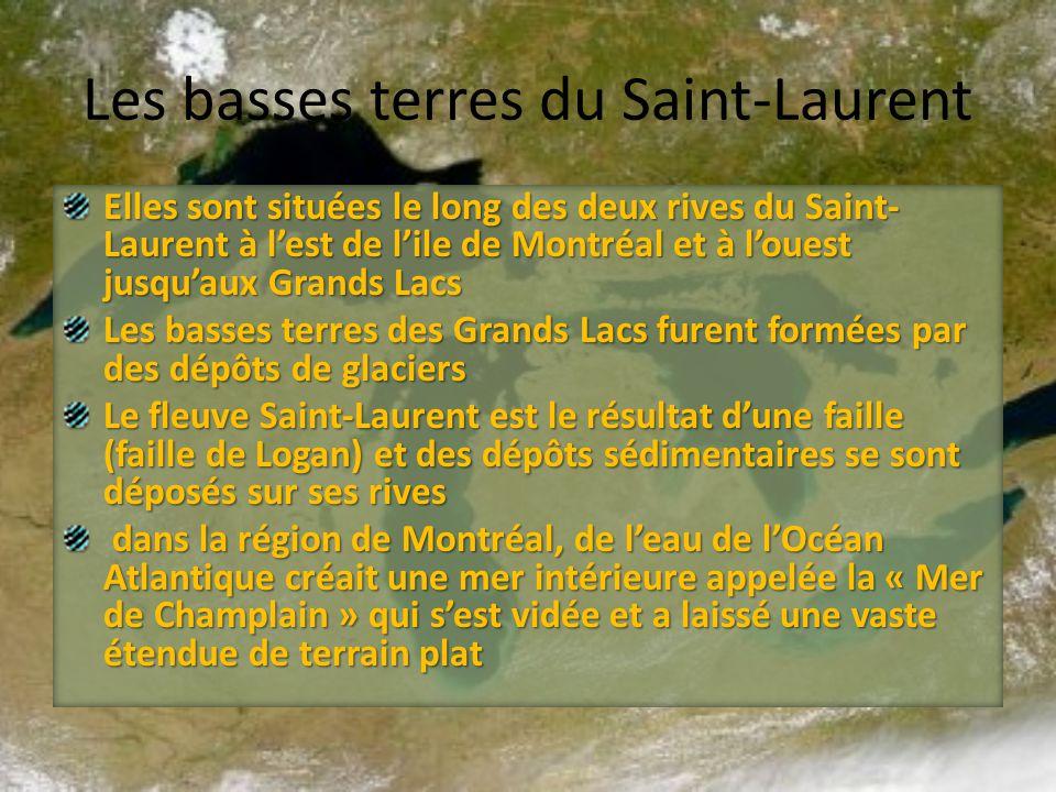 Les basses terres du Saint-Laurent Elles sont situées le long des deux rives du Saint- Laurent à lest de lile de Montréal et à louest jusquaux Grands
