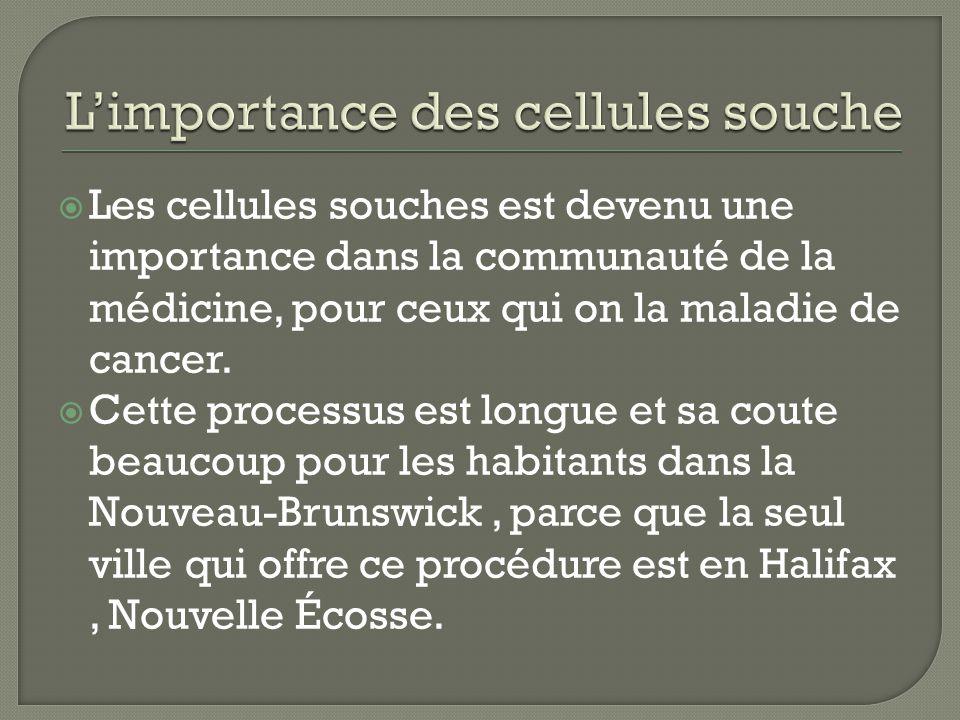 Les cellules souches est devenu une importance dans la communauté de la médicine, pour ceux qui on la maladie de cancer.