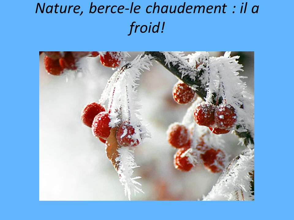 Nature, berce-le chaudement : il a froid!