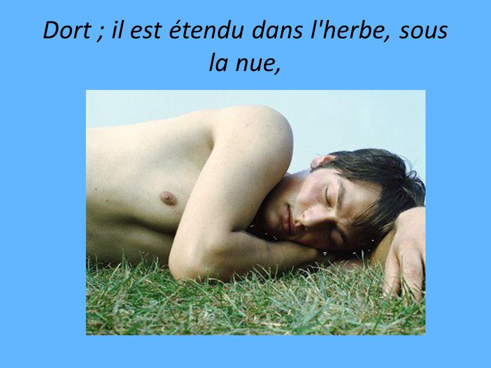Dort ; il est étendu dans l herbe, sous la nue,
