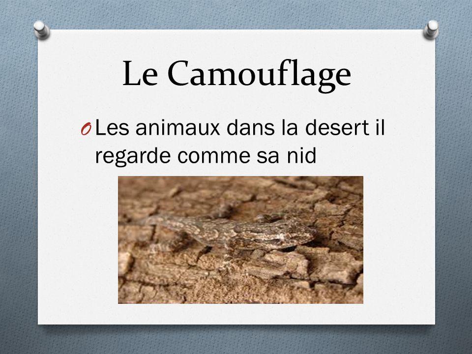 Le Camouflage O Les animaux dans la desert il regarde comme sa nid