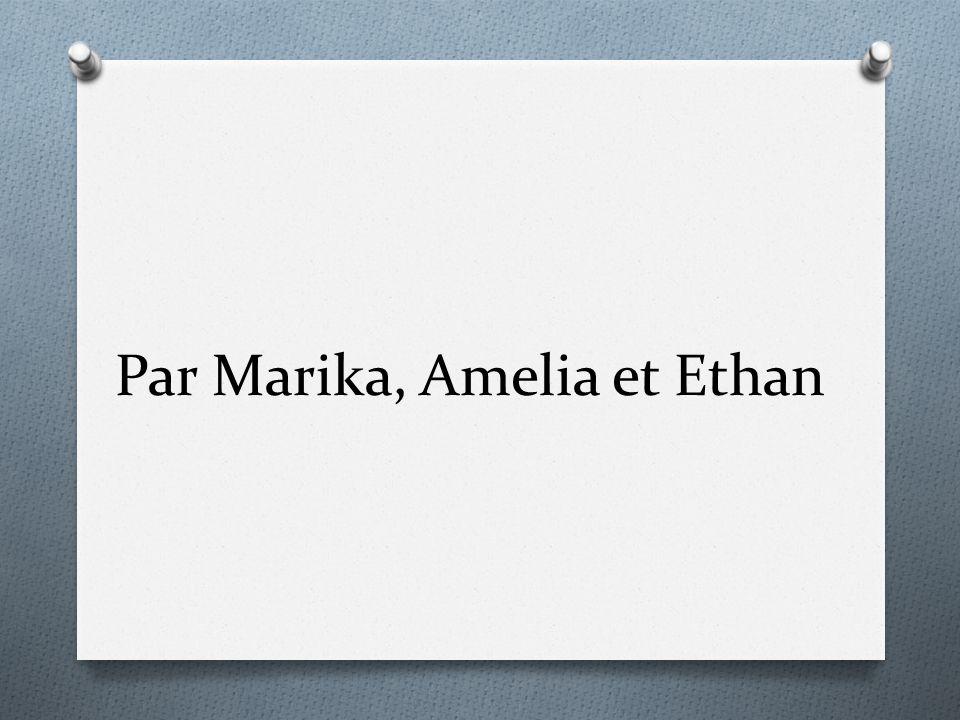 Par Marika, Amelia et Ethan